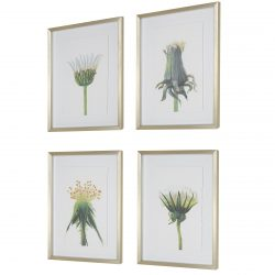 Uttermost Wildflowers Gold Framed Prints, S/4