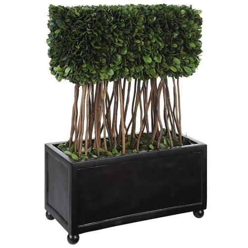 Uttermost Preserved Boxwood Rectangular Topiary