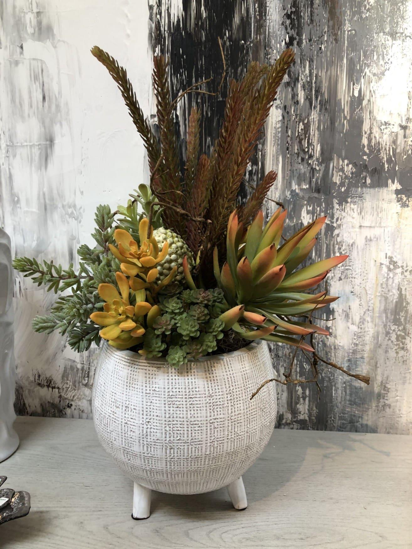 colorful succulent design